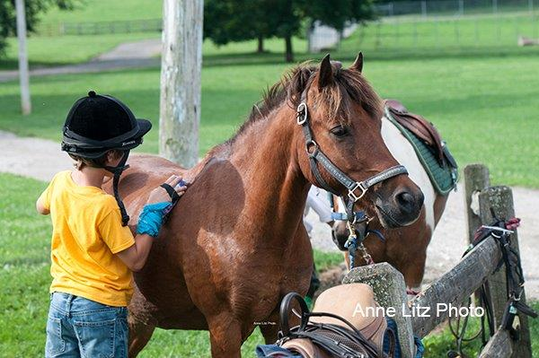 Pony Camp Photos